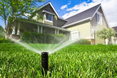 covpw-utilityimagecr-sprinkler